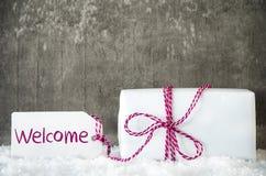Vit gåva, snö, etikett, textvälkomnande Royaltyfri Fotografi