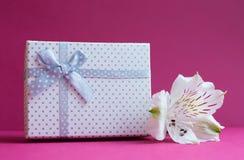 Vit gåvaask med den enkla alstroemeriablomman på karmosinröd backgr Royaltyfria Bilder