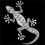 Vit gecko på en svart bakgrund Royaltyfri Bild