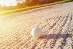 Vit golfboll för selektiv fokus på sandbunker med gräsplan fi royaltyfria foton