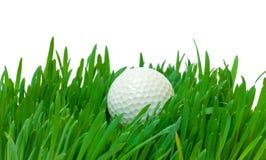 Vit golfboll i det långa gräset Arkivbild