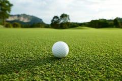 Vit golfboll på farled med den gröna bakgrunden i counen arkivbild