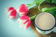 Vit vit gräns för röd tulpan på den blåa marshmallowen för bakgrundskakaokopp Royaltyfria Foton