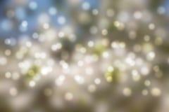 Vit-, gräsplan- och blåttabstrakt begrepp semestrar bokeh Fotografering för Bildbyråer