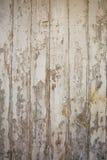 Vit/grå wood texturbakgrund med naturliga modeller fotografering för bildbyråer