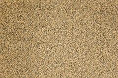 Vit gul grå grynig yttersida av små stenar av olika former och format Textur f?r grov yttersida arkivfoto