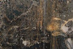 Vit gulaktig bränd korrugerad färg färgar på rostig metall s Royaltyfri Foto