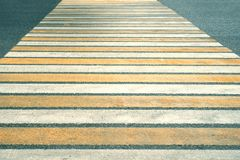 Vit-guling linjer av övergångsstället till och med körbanan med solljuset, trafiksäkerhet arkivbilder