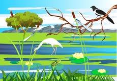 Vit häger, skata på trädfrunchsjön royaltyfria bilder