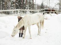 Vit häst och kvinna royaltyfria bilder