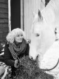 Vit häst och kvinna fotografering för bildbyråer