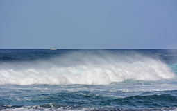 Vit havvåg fotografering för bildbyråer