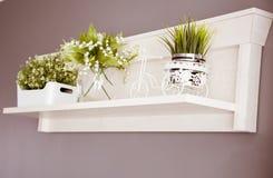 Vit hylla och gröna växter royaltyfria foton
