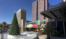 Vit jul i i stadens centrum Phoenix, AZ Royaltyfri Fotografi