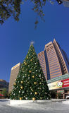 Vit jul i i stadens centrum Phoenix, AZ Royaltyfri Bild