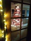 Vit julgran till och med en exponeringsglasdörr royaltyfri fotografi