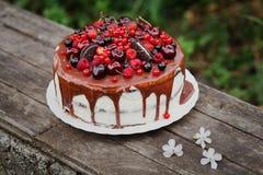 Vit kaka med bär och kex royaltyfria bilder