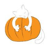 Vit katt royaltyfri illustrationer