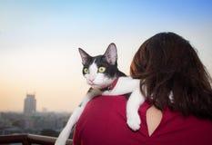 Vit katt för ung asiatisk kvinnahållsvart i händer Arkivfoton