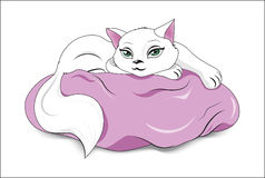 Vit katt på en kudde Arkivbilder