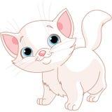 Vit kattunge royaltyfri illustrationer