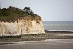 Vit klippa på den Pegwell fjärden i Kent royaltyfri bild