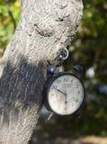 Vit klocka för tappning som hänger på trädet Royaltyfri Foto