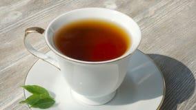 Vit kopp av varmt svart te, slut upp stock video