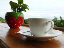 Vit kopp kaffe och grön växt Arkivfoto