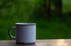 Vit kopp på tabellen Arkivfoton