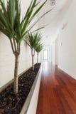 Vit korridor i hus royaltyfri foto