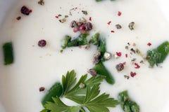 Vit kräm- soppa med mosaikpeppar och nya persiljasidor i en vit keramisk bunke arkivbild