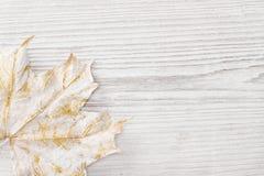 Vit lönnlöv, träbakgrund Royaltyfri Fotografi