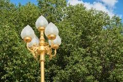 Vit lampa på guld- pelare Arkivbilder