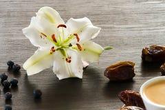 Vit lilja med frukter och choklad Royaltyfria Bilder