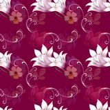 Vit lilja på rosa bakgrund Arkivbild