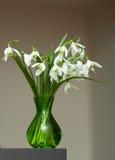Vit liljekonvalj i bukett Royaltyfri Foto