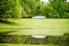 Vit limo som reflekterar i sjön fotografering för bildbyråer