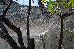 Vit linje modell av vatten från springer Royaltyfria Bilder