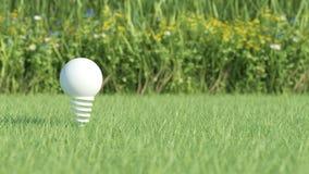 Vit ljus kula på gräsfält Arkivbilder