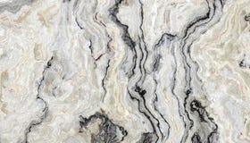 Vit lockig marmor Arkivbild
