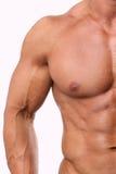 Vit manlig torso Arkivfoto
