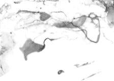 Vit marmorera textur Idérik bakgrund med målad abstrakt begreppolja vinkar handgjord yttersida Arkivfoto