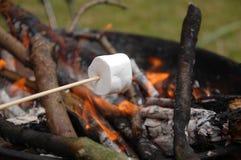 Vit marshmallow Royaltyfri Foto