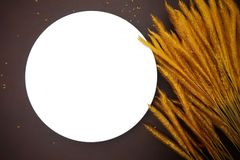 Vit maträtt med örat av ris på brun läderbakgrund Royaltyfria Bilder