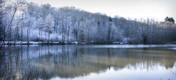 vit mest forrest sjö för vinter arkivfoto