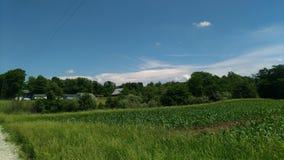 Vit molnbank i sydostlig himmel Arkivfoto