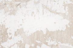 Vit murbrukväggbakgrund, grunge Royaltyfri Bild