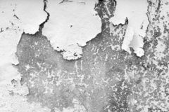 Vit- och grå färgbakgrund Knäcka och skala målarfärg från en betongvägg arkivfoton