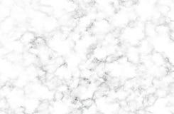 Vit och grå färger marmorerar textur med delikata åder Arkivbilder